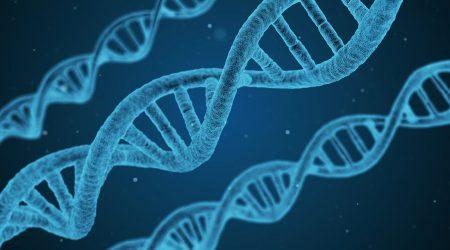 DNA4_pixabay