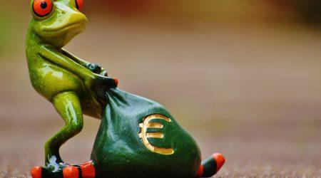 Euro-kikker_pixabay