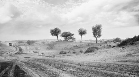 Weg-woestijn_pixabay